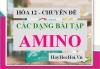 Các dạng bài tập Amino Axit có đáp án và lời giải - Hóa 12 chuyên đề
